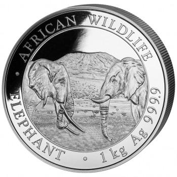 SOMALIE 2020 - 1 kilo argent - Elephant, la Faune Africaine - African Wildlife