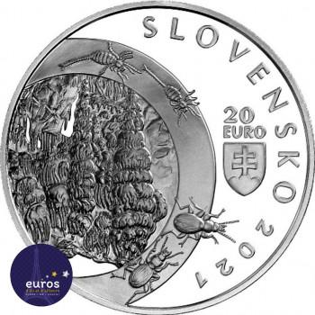 Revers de la pièce de 20 euros SLOVAQUIE 2021 - Zone Paysagère Protégée des Montagnes - Grotte de la Liberté de Demänovská - BU