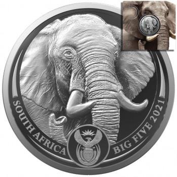 AFRIQUE du SUD 2021 - Big...